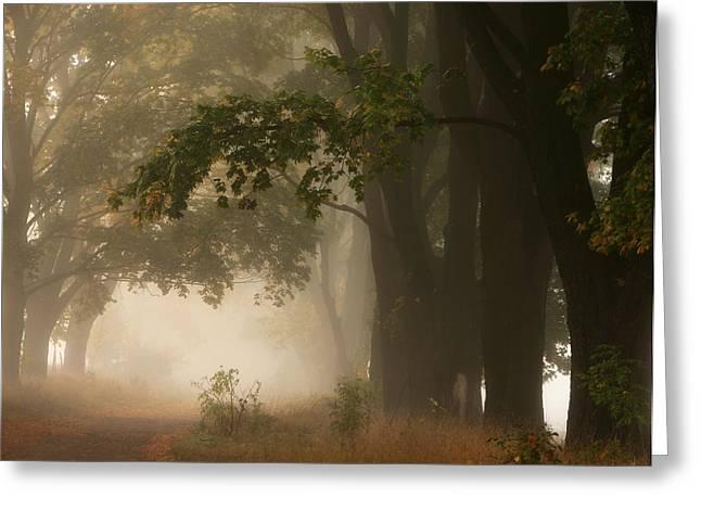 Autumn Greeting Card by Fproject - Przemyslaw Kruk