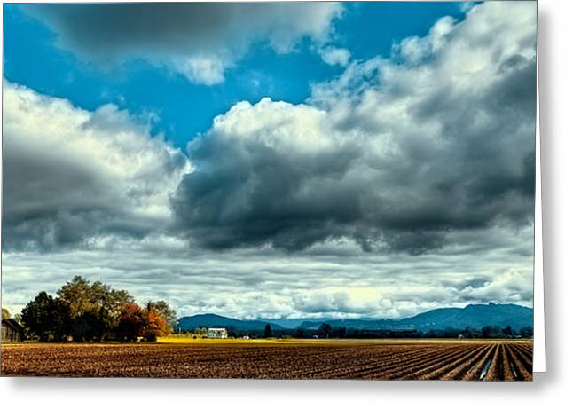 Autumn In Mount Vernon Greeting Card by David Patterson
