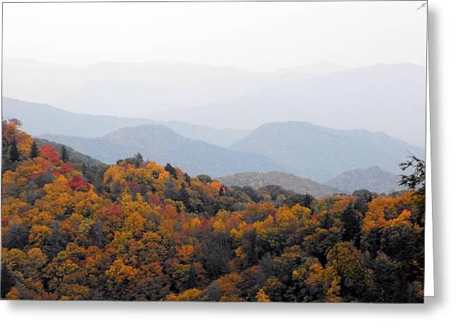 Autumn In The Smokie Mountains Greeting Card by Eva Thomas