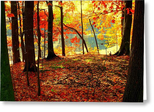 Autumn Lake Greeting Card by Aron Chervin