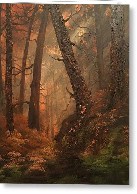 Autumn On Cannock Chase Greeting Card by Jean Walker