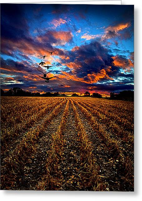 Autumn Rising Greeting Card by Phil Koch