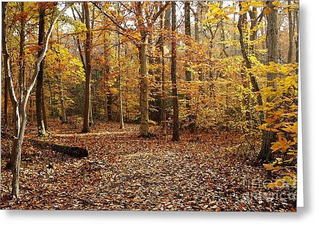 Autumn Scenery 2 Greeting Card by Hideaki Sakurai