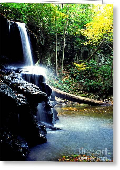 Autumn Upper Falls Holly River Greeting Card by Thomas R Fletcher