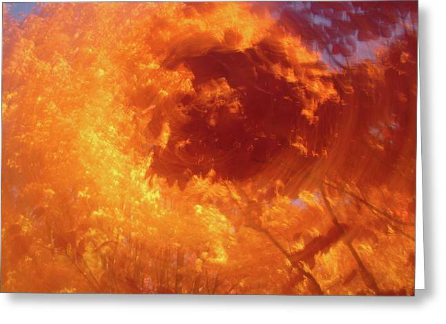 Autumnal Swirl Lll Greeting Card by Charles Shedd