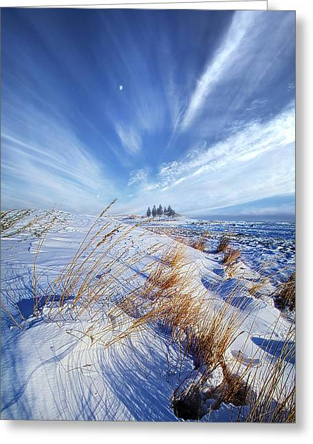 Azure Greeting Card by Phil Koch