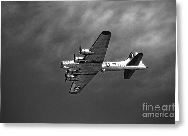 B-17 Bomber - Infrared Greeting Card by Thanh Tran