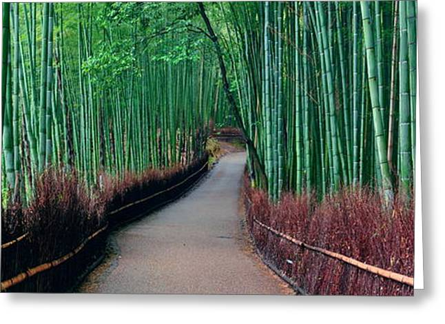 Bamboo Grove Greeting Card