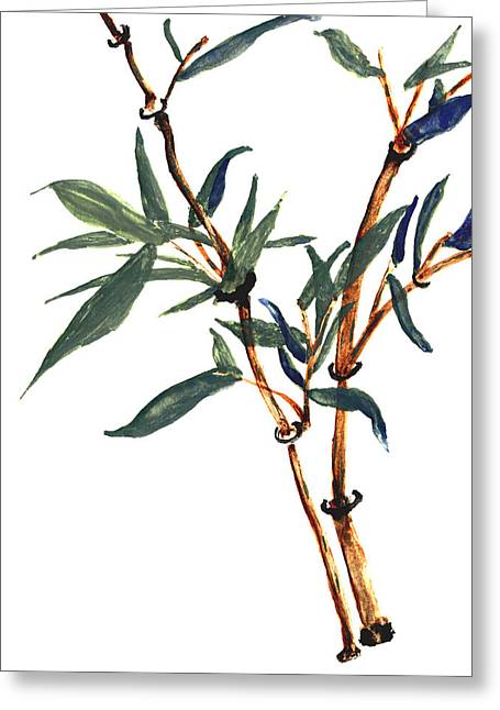 Bamboo Greeting Card by Merton Allen