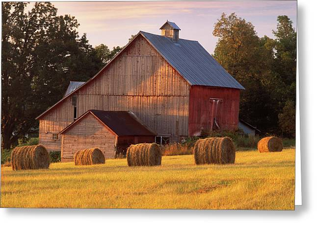 Barn. North Hero, Vermont Greeting Card by George Robinson