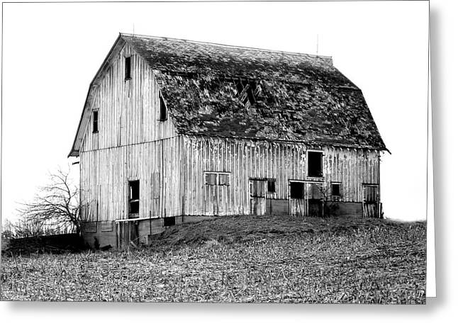 Barn On The Hill Bw Greeting Card by Julie Hamilton