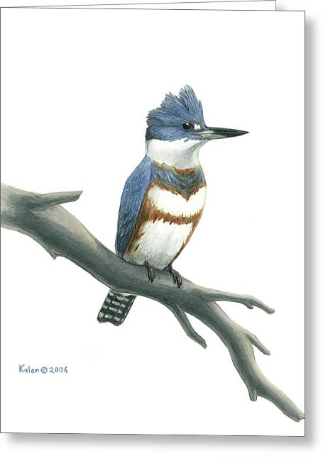 Belt Drawings Greeting Cards - Belted Kingfisher Perched Greeting Card by Kalen Malueg
