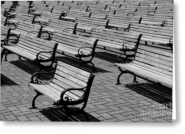 Benches Greeting Card by Perry Webster