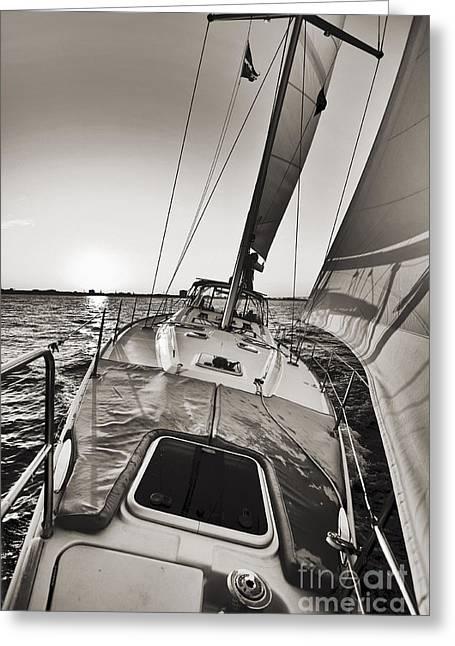 Beneteau 49 Sailing Yacht Close Hauled Charleston Sunset Sailboat Greeting Card