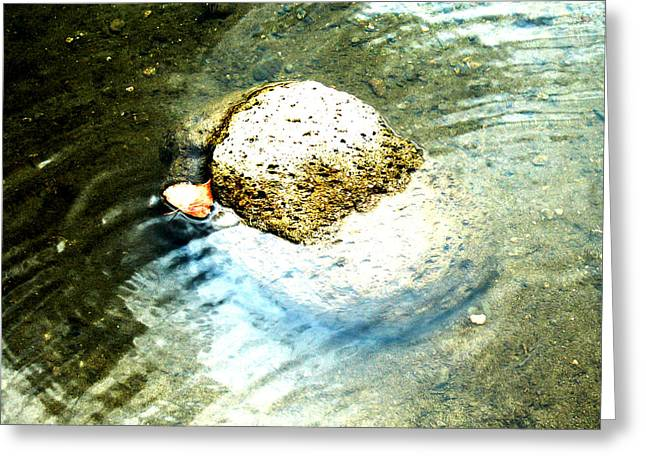 Beside Still Waters Greeting Card by Tim Tanis