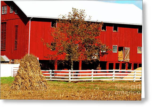 Big Red Pa Barn Greeting Card by Paul W Faust - Impressions of Light