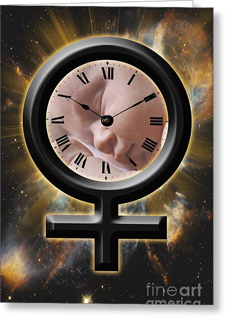 Biological Clock Greeting Card by George Mattei