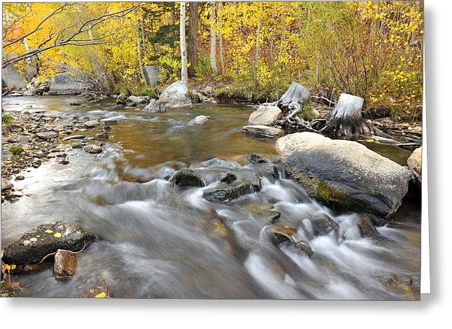 Greeting Card featuring the photograph Bishop Creek In The Fall by Dung Ma