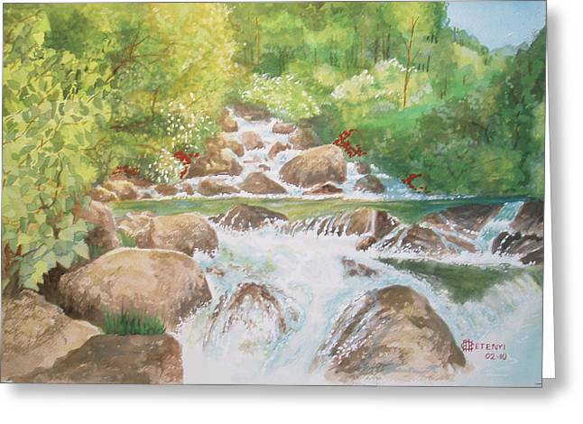 Bishop Creek South Fork Greeting Card by Charles Hetenyi