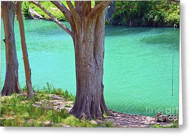 Blanco River Texas Greeting Card by Ray Shrewsberry