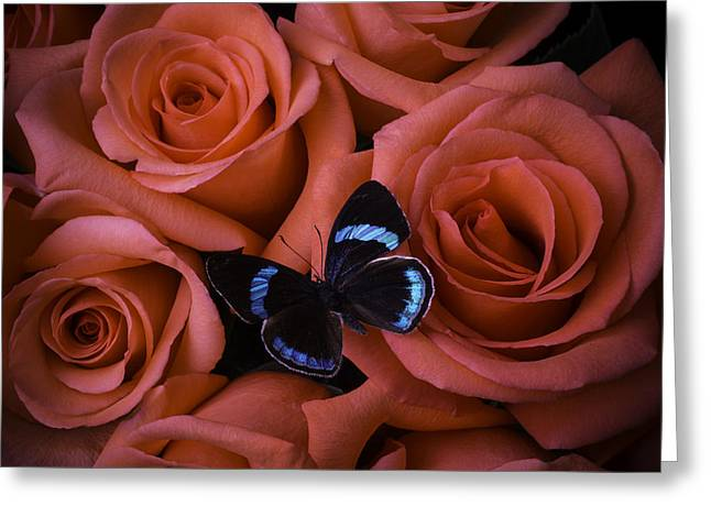 Blue Black Butterfly Greeting Card