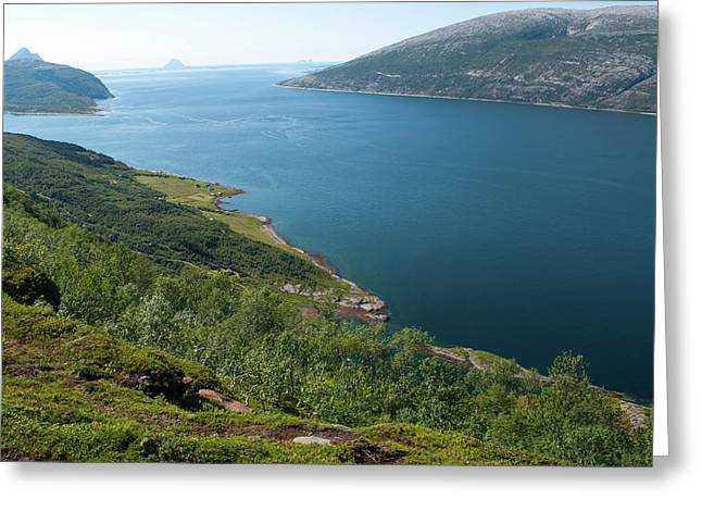 Blue Fjord Greeting Card by Tamara Sushko
