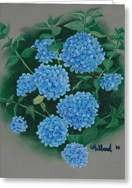 Blue Hibiscus Greeting Card by Charles Hubbard