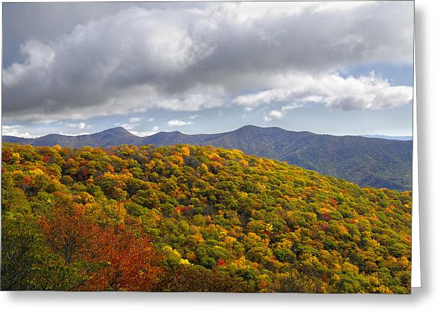 Blue Ridge Mountains In Autumn Color Greeting Card by Darrell Young