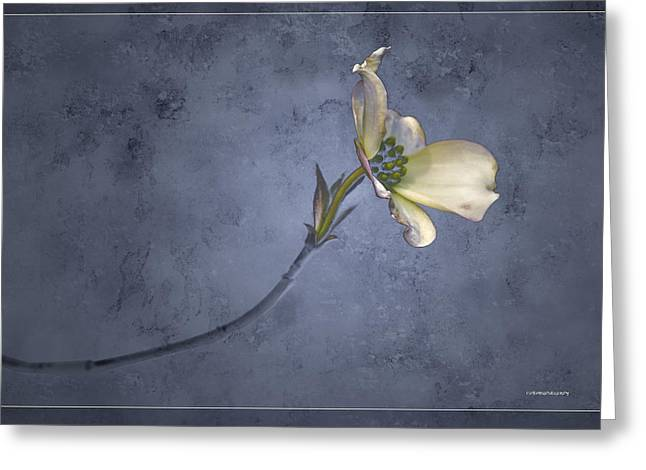 Ron Jones Greeting Cards - Blue Spring Greeting Card by Ron Jones
