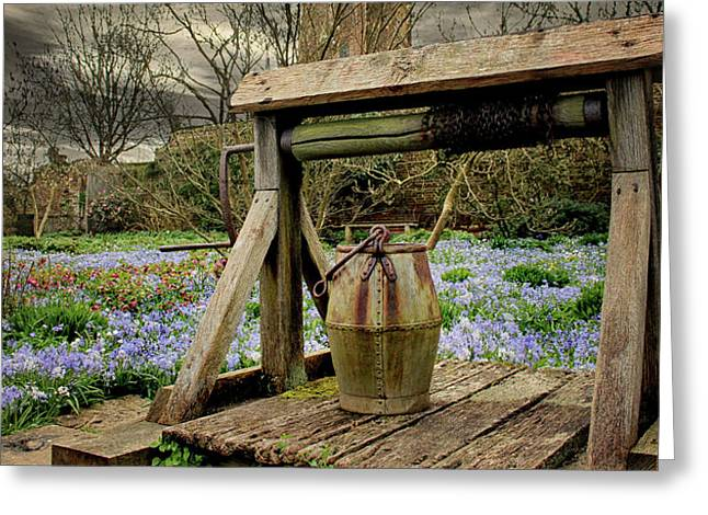Bluebell Fields Greeting Card by Martin Newman