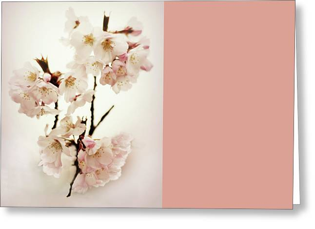 Greeting Card featuring the photograph Blushing Blossom by Jessica Jenney