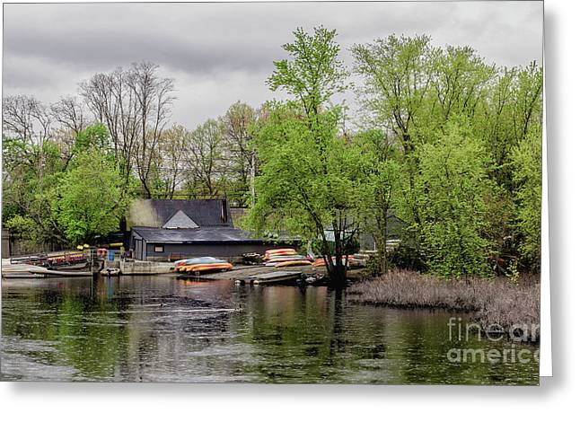 Boats Greeting Card by Bruce Coulter