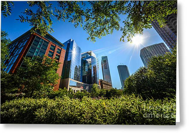 Boston Downtown City Buildings Through Trees Greeting Card