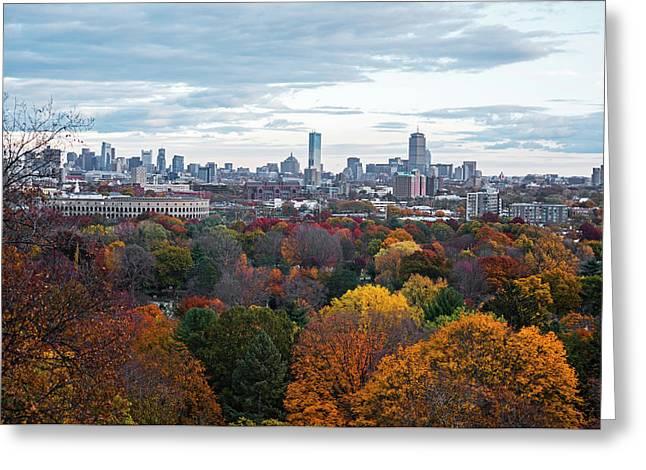 Boston Through The Autumn Trees Boston Ma Greeting Card