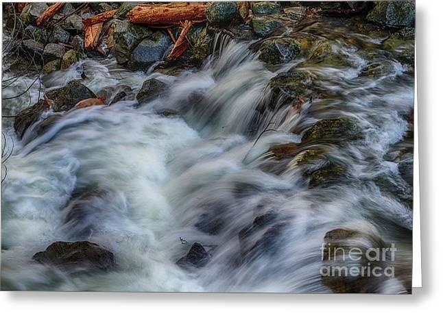 Bridalveil Creek In Yosemite Greeting Card by Terry Garvin