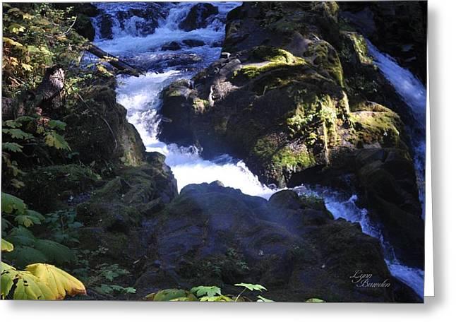 Brink Of The Falls Greeting Card by Lynn Bawden