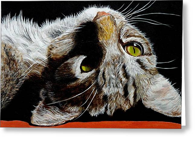 Brown Tabby Cat Greeting Card