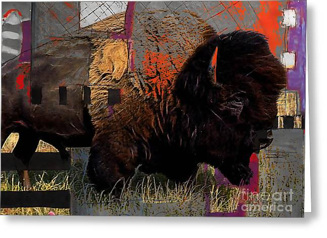 Buffalo Collection Greeting Card by Marvin Blaine