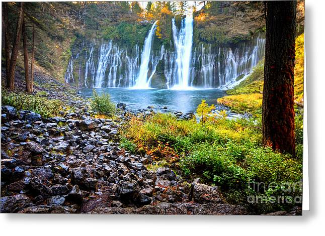 Burney Falls  Greeting Card by Kelly Wade