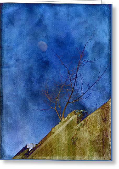 By The Light Of The Moon Greeting Card by Jan Amiss Photography