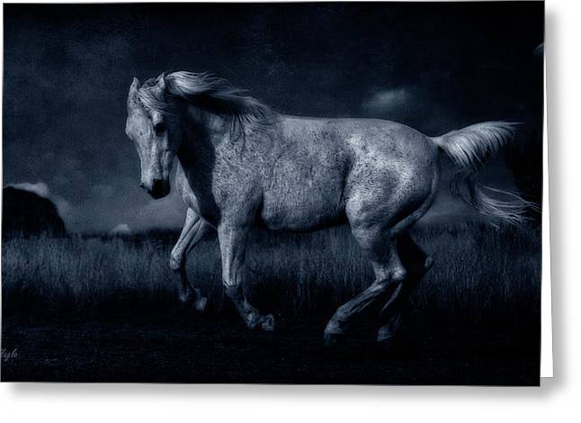 By The Light Of The Silvery Moon Greeting Card by Karen Slagle