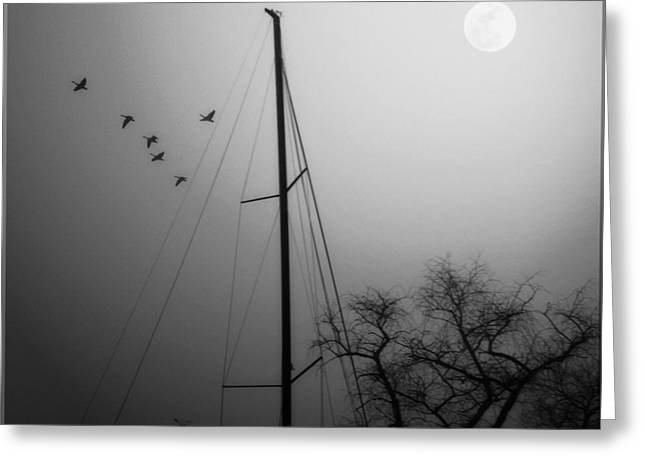 By The Pale Moon Greeting Card
