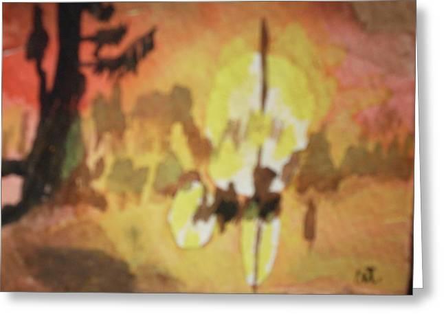 Cajun Sunrise Greeting Card by Warren Thompson