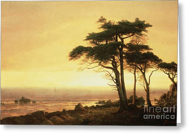 California Coast Greeting Card by Albert Bierstadt