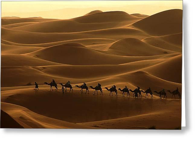 Camel Caravan In The Erg Chebbi Southern Morocco Greeting Card