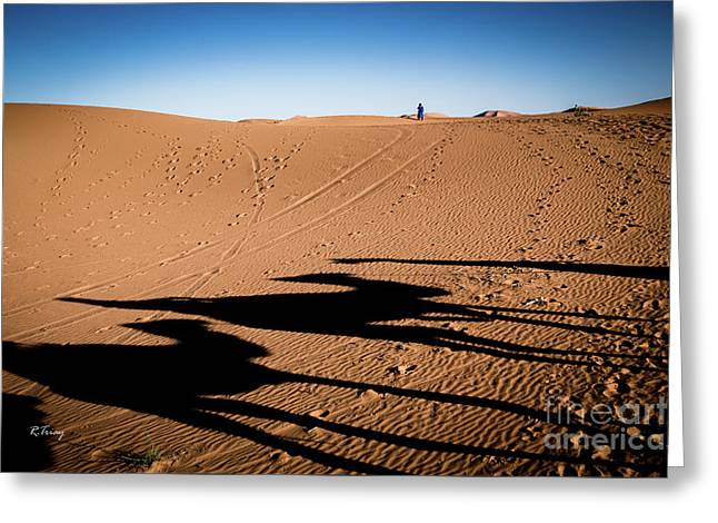 Sunset Sahara Camel Caravan Greeting Card