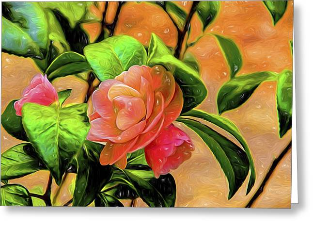 Camellia Candy Greeting Card