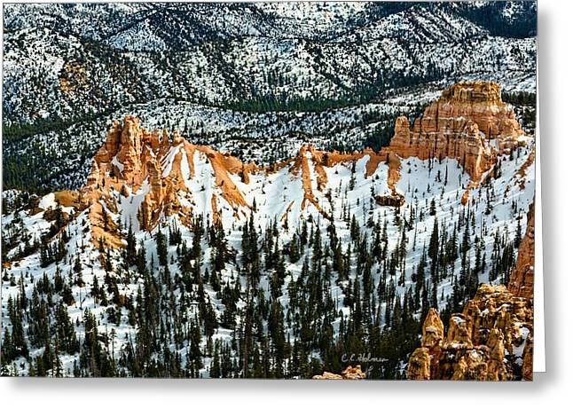 Canyon View Greeting Card by Christopher Holmes