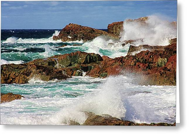 Cape Bonavista, Newfoundland Greeting Card