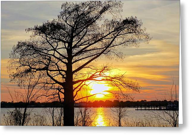 Carolina Sunset Greeting Card by Victor Montgomery